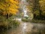 Autumn UK 2017